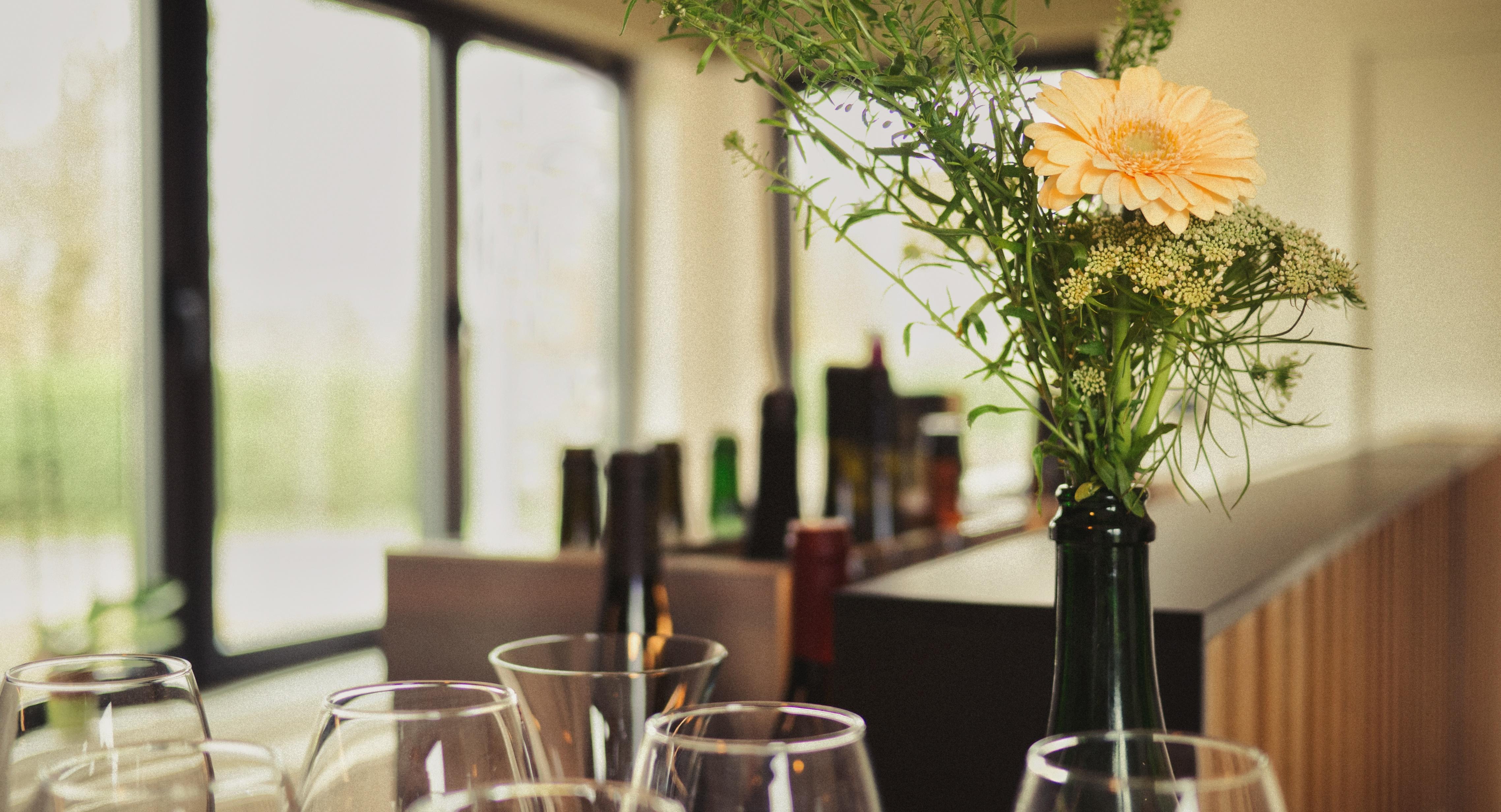 vinifika-services-wijnwinkel