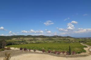 Vinifika-domaine-des-carabiniers-landscape