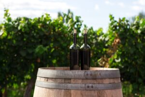 vinifika-wijndegustaties